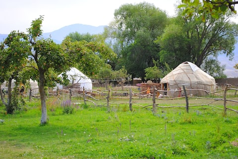 Holiday in Yurt Camp ALMALUU