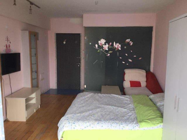 北京西站 西二环 独立一居 有wifi 可做饭 温馨公寓 - 北京 - Apartamento
