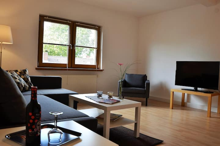 Renovated  2 Room Apartment in Duisburg / 50 m²