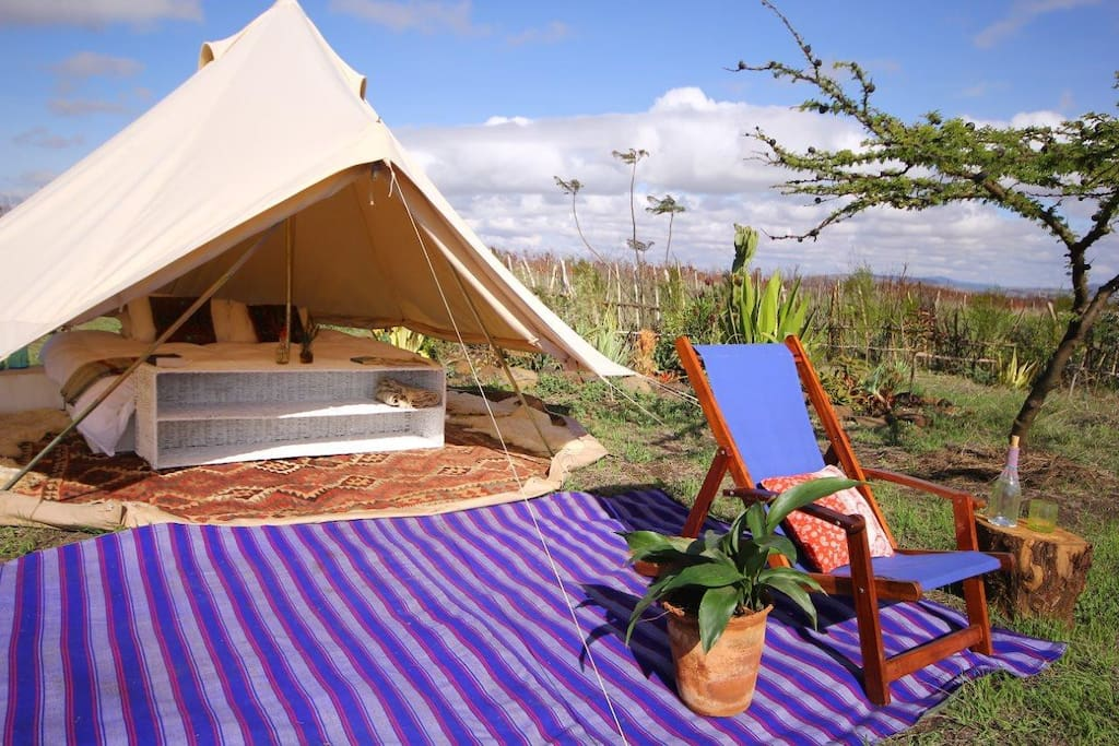 Glamping luxury in beautifully bespoke bell-tents, with all the furnishings and comforts of high-end lodges.  The bell tents can be rolled up at the sides for full breeze on hot days.