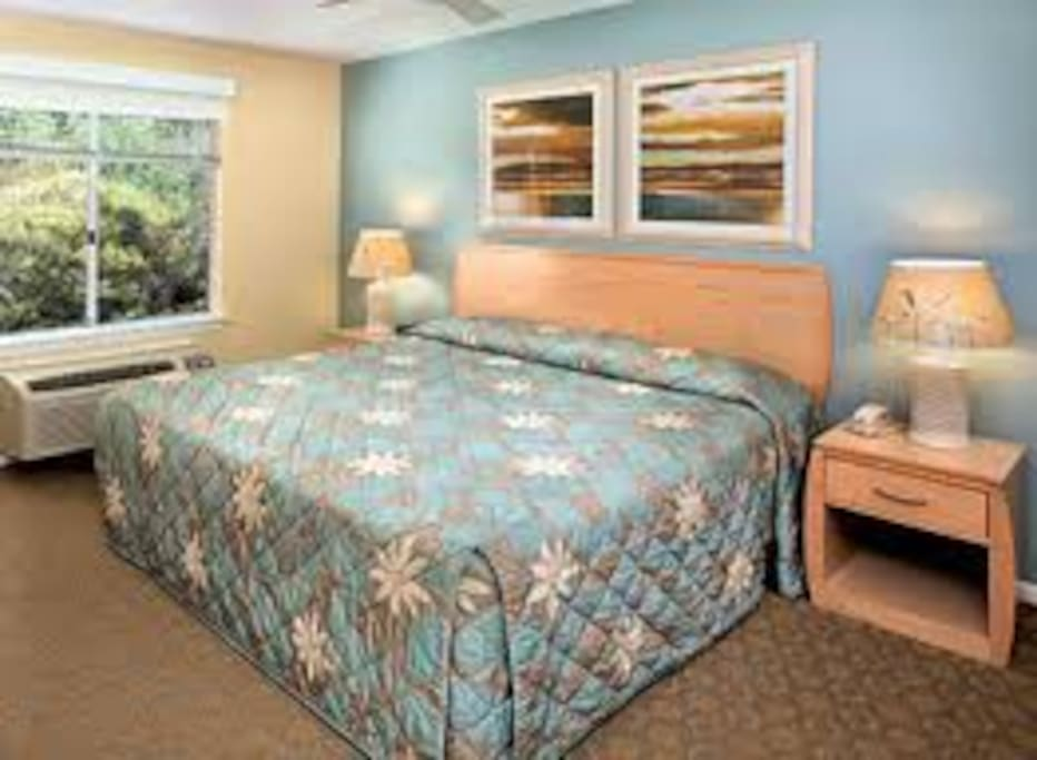 Worldmark Timeshare 1 Bedroom Condominiums For Rent In San Diego California United States