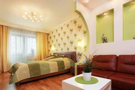 ТОПовый вариант! 500% - Novossibirsk - Appartement