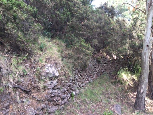 Mur construit par les anciens pour cultiver en terrasse sur Monte Fossa