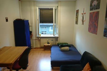 Gemütliches Zimmer in ruhiger Wg - Curych