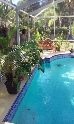 Woodland Waters - a tropical pool home - Palm Harbor - Haus