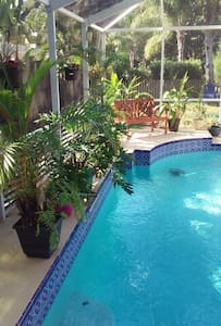 Woodland Waters - a tropical pool home - Palm Harbor