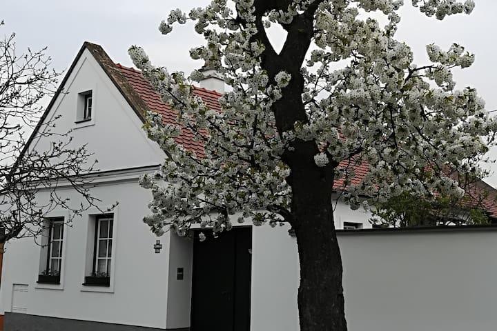 Casa Parndorf  / Deutsch_English_Romana