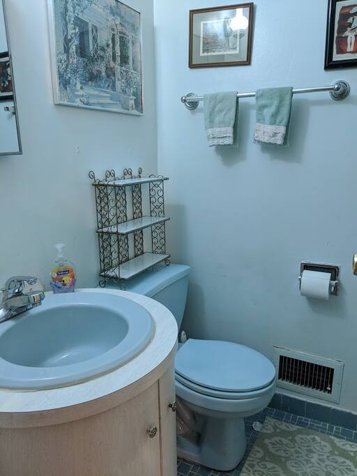 Private en suite bathroom (master bedroom).