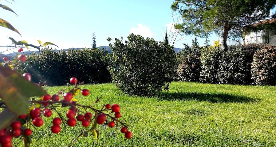Agriturismo Podere Casa al Vento - Montepulciano - Appartement
