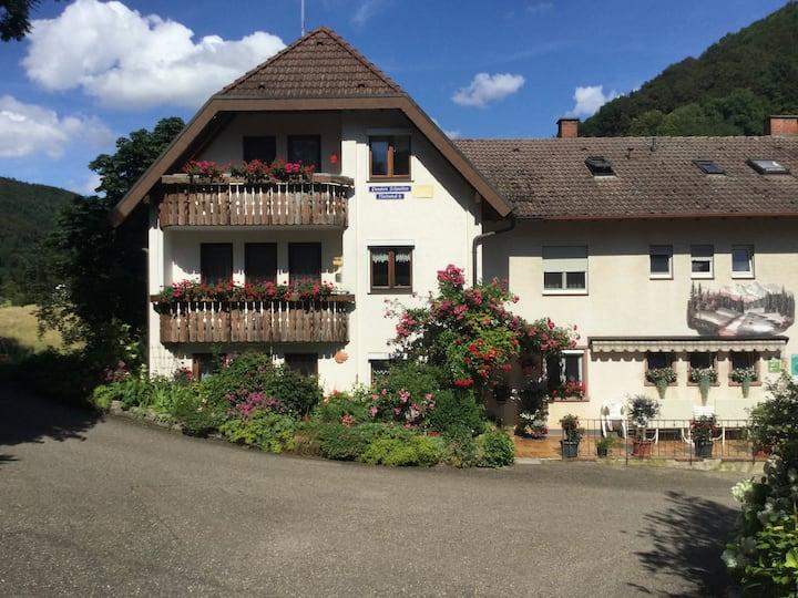 Pension Schneider, (Freiamt), Nr. 4 FW Bachstelze, 29qm, 1 Schlafraum