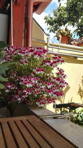 Casa accogliente e confortevole - Lecce, Puglia, IT - Rumah