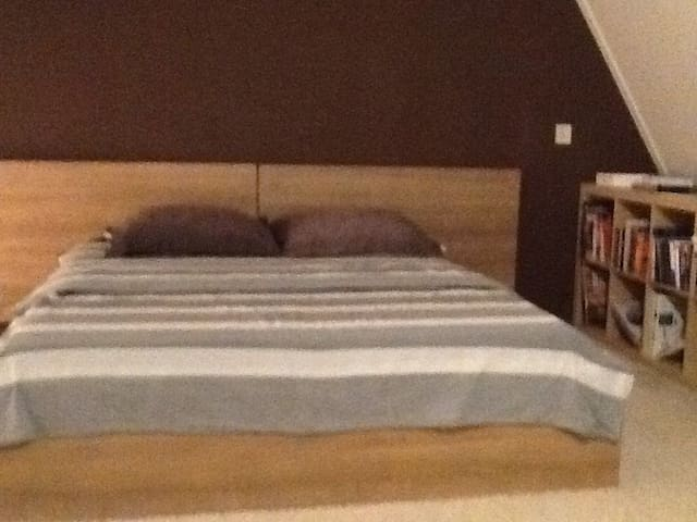 Nijmegen A big double bedroom - Nijmegen - House