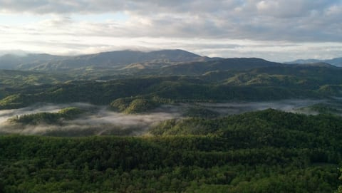 Heavenly Views of the Smoky's!  Private hot tub!