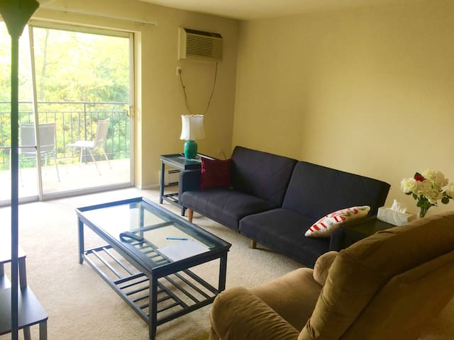 Spacious 1 bedroom apartment close to downtown/