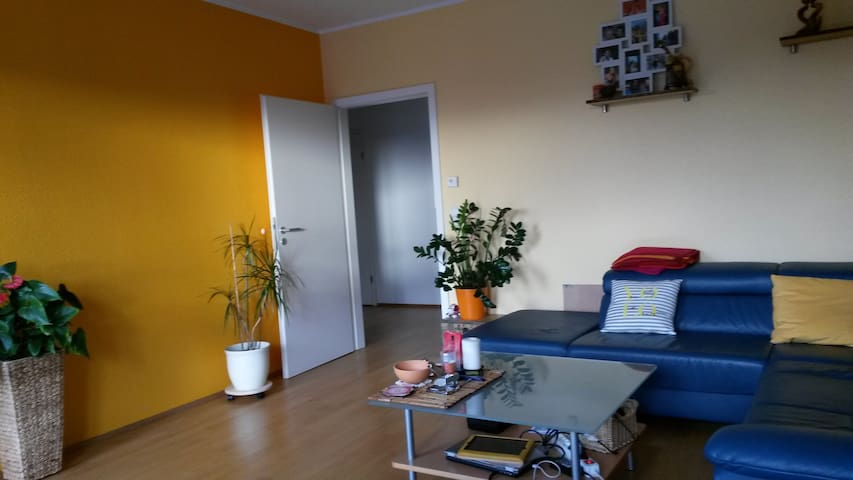 Spacious family flat in trendy area - Cologne