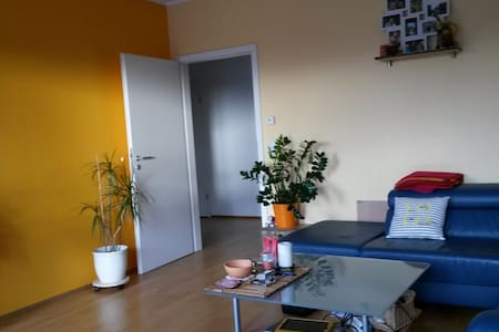 Spacious family flat in trendy area - Cologne - Apartment
