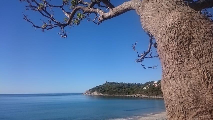 Un po' di relax a 150 metri dal mare!