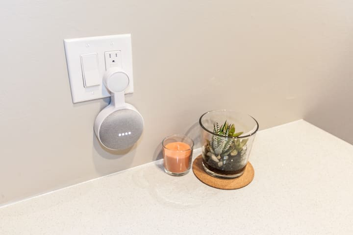 Google Home (Mini)