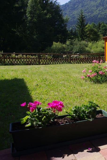 giardino (in comune con altro appartamento)