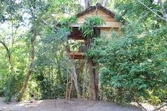 Tree+House+-+Midigama