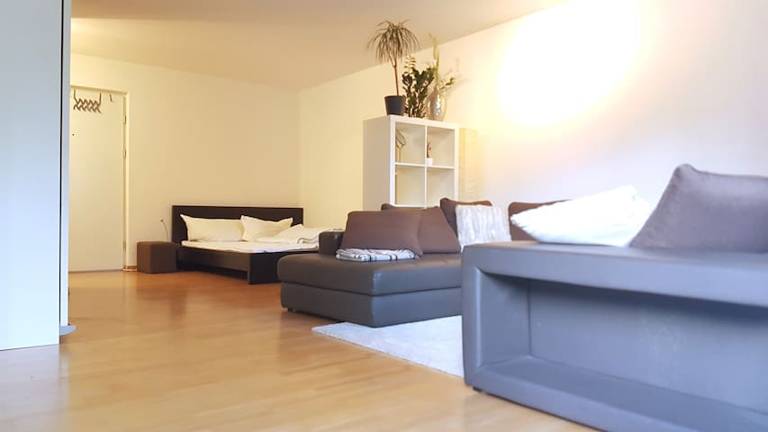 Convenient flat near Winterthur & Zurich