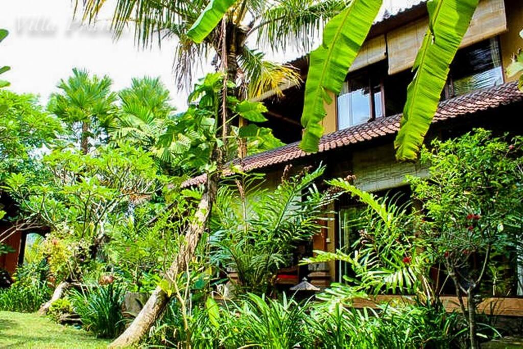 Lush tropical garden around the Villa