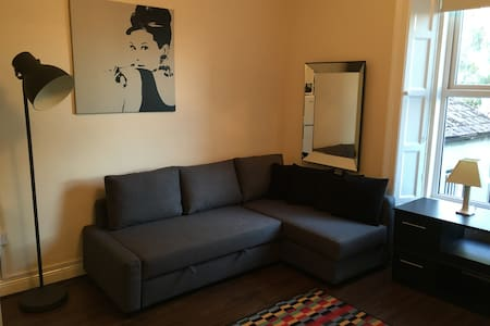 COSY APARTMENT IN RATHMINES AREA OF DUBLIN CENTRE - Rathmines