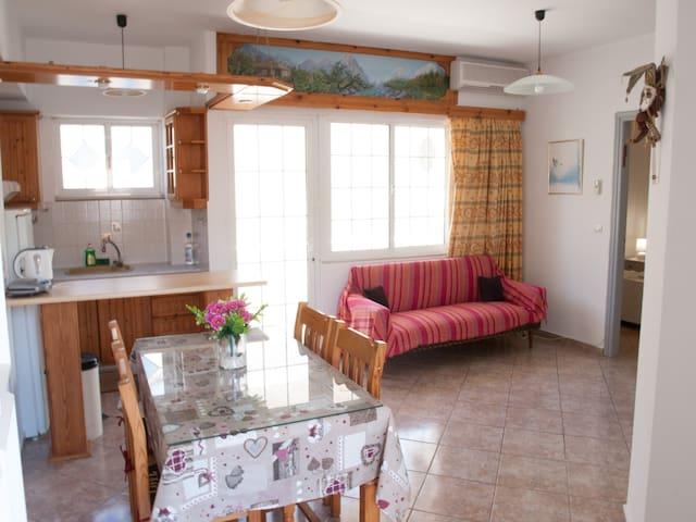 Ariadni apartment (2 bedrooms) - Kokkini Chani