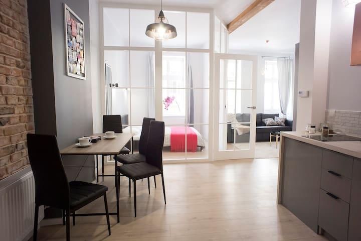 Torun Best Location Apartment