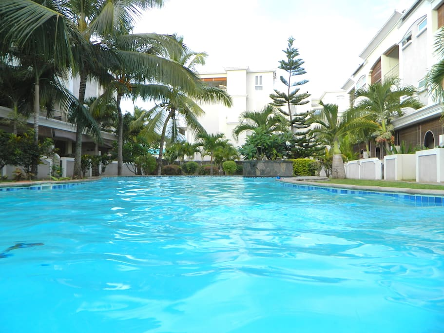 Swimming Pool / Piscine