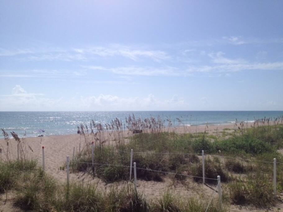 the great Atlantic and the beautiful beach of Hutchinson Island.