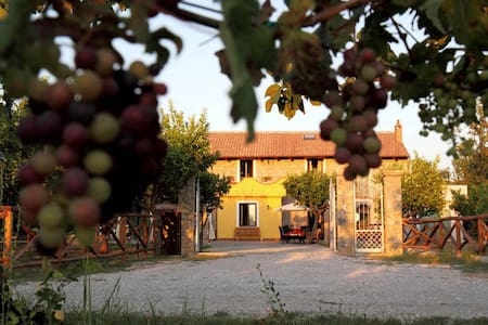 B&B Panta Rei Azienda Agricola - Bed & Breakfast