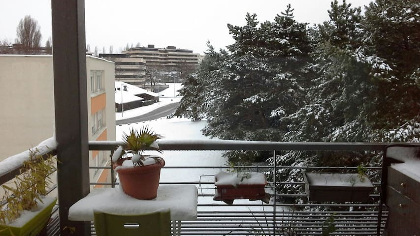 Amazing view of the mountains ! - Ferney-Voltaire - Appartement