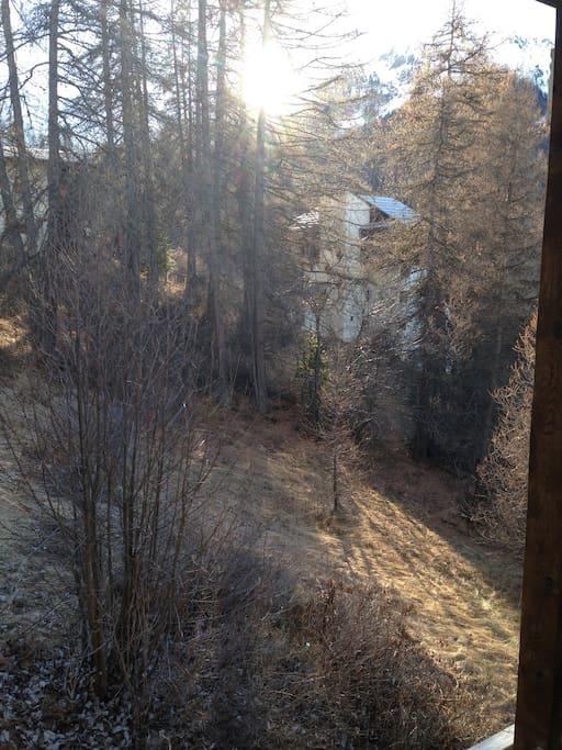 vue de la fenêtre (avant l'hiver!!)