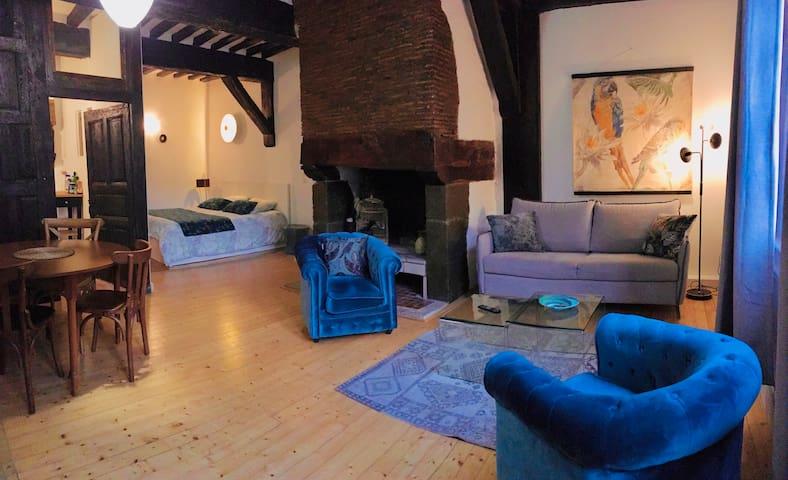 Appartement  au cœur du vieux Rennes  /St Anne