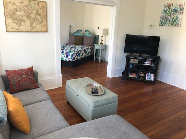 Cozy Downtown Apartment on Forsyth!