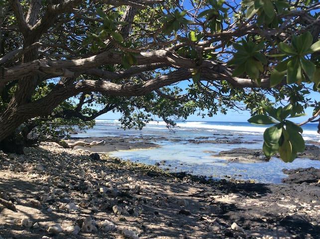 Puako place mauka - Waimea - House