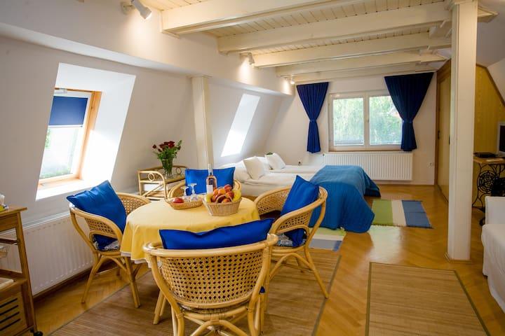 Pelso appartement - Vonyarcvashegy - Huoneisto