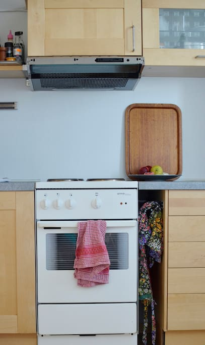 kitchen: stove, fridge, sink