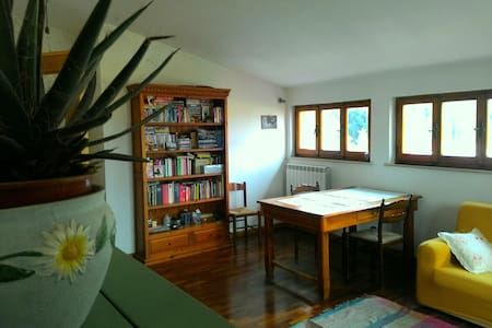 Bright and comfortable apartment! - Perugia - Apartment
