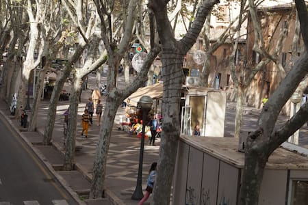 Habitación en el centro: La Rambla - Palma - Apartamento