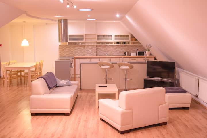 Luxury Apartment in City Center