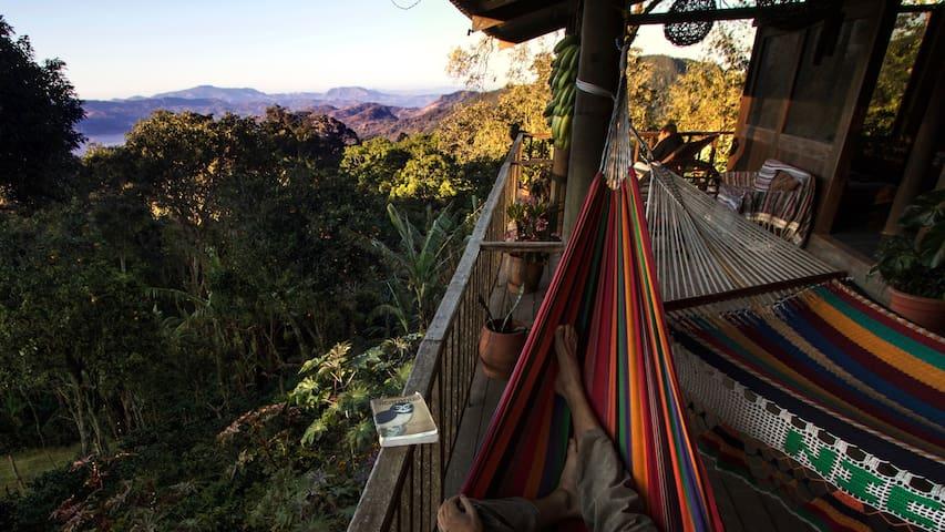Finca Musica del Bosque - Monkey - Matagalpa - Natur lodge