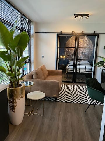 Luxury Suite with garden near beach and Amsterdam