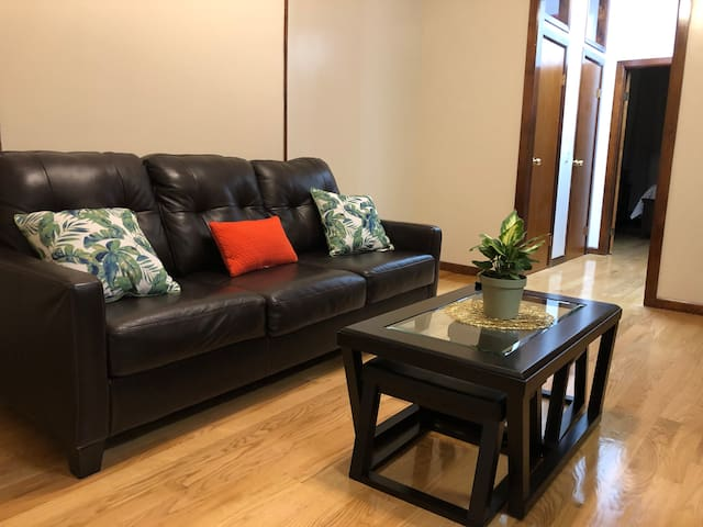 Newly Renovated Bed-Stuy Brownstone Apartment