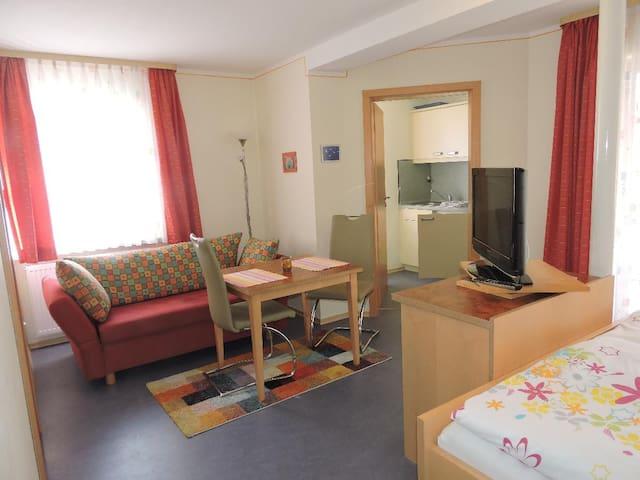 Appartementhaus Löwenzahn (Bad Füssing), Einraumappartement Nr. 3 (29qm) mit Balkon