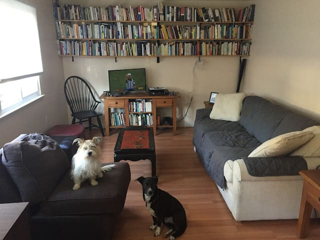Living room at front of house, with our two dogs. MUST LOVE DOGS. THEY ARE SWEET RESCUES AND WE ARE KIND TO THEM.