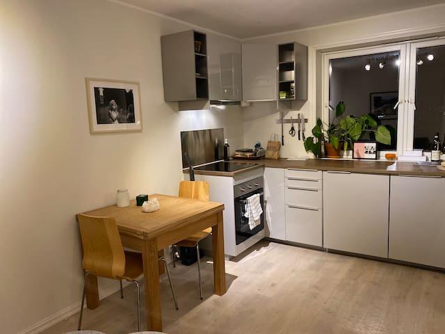 Praktisk og hyggelig leilighet rett ved t-banen