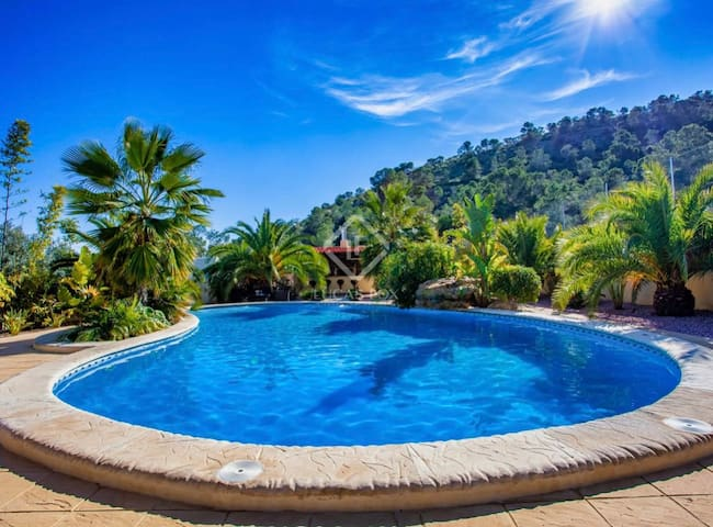 Tropical Paradise in 8acres