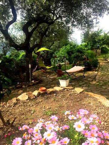 Giardino - Dondolo, Amaca
